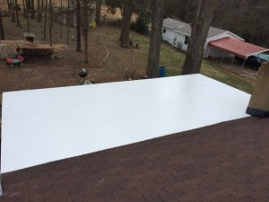 Flat Roof1-March16